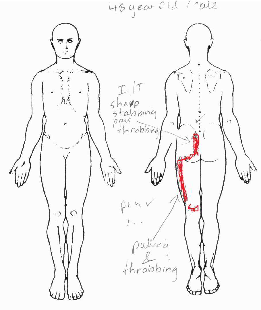 body diagrams for charting injury